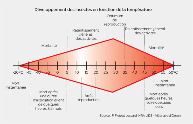 Développement des insectes en fonction de la température