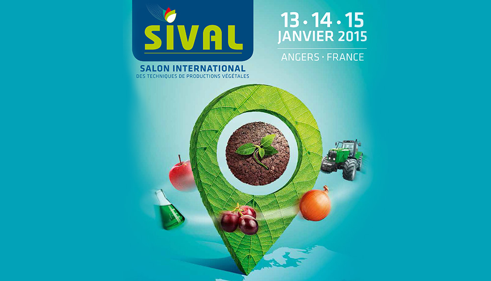 Photo of Sival : cap sur l'avenir des productions