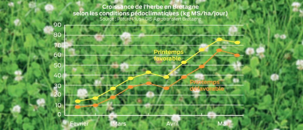 croissance-herbe-bretagne