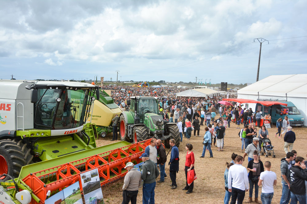 agrifete-2015