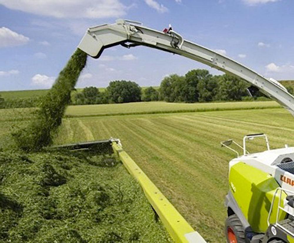 Photo of Ensilage d'herbe,  viser le bon taux de MS