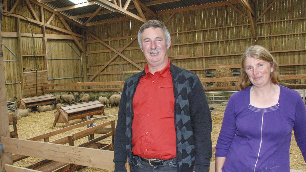 Photo of Ovin : nouveau bâtiment pour l'AOP agneaux prés-salés