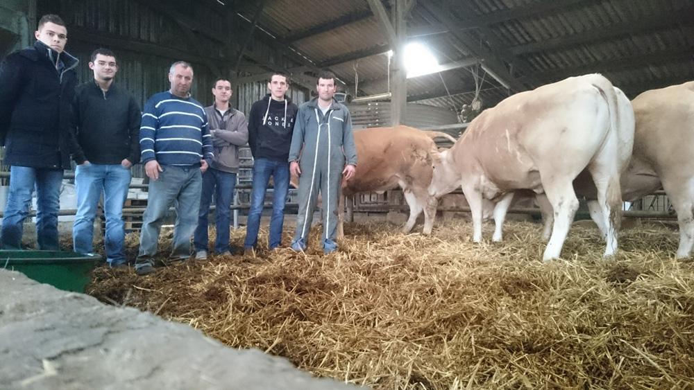 Photo of Porte ouverte  sur l'élevage Logiou