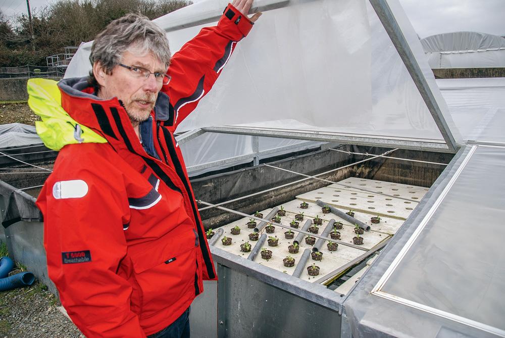 Photo of La pisciculture du futur consomme 10 fois moins d'eau