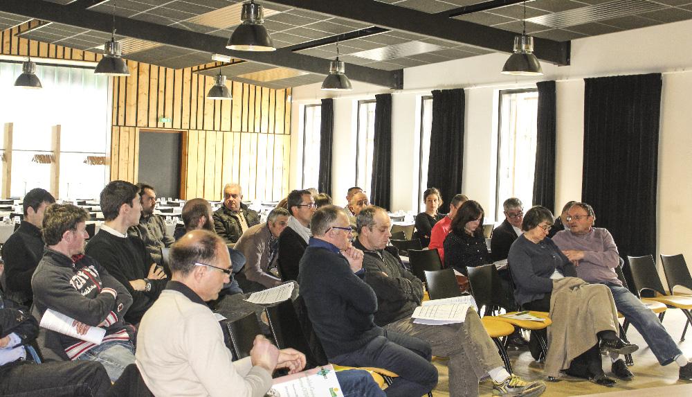 Photo of Ovi-Ouest lance un plan de développement