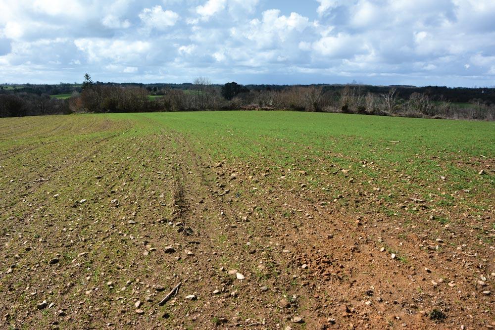 Photo of Agronomie : « Je suis responsable de l'état de mon sol »