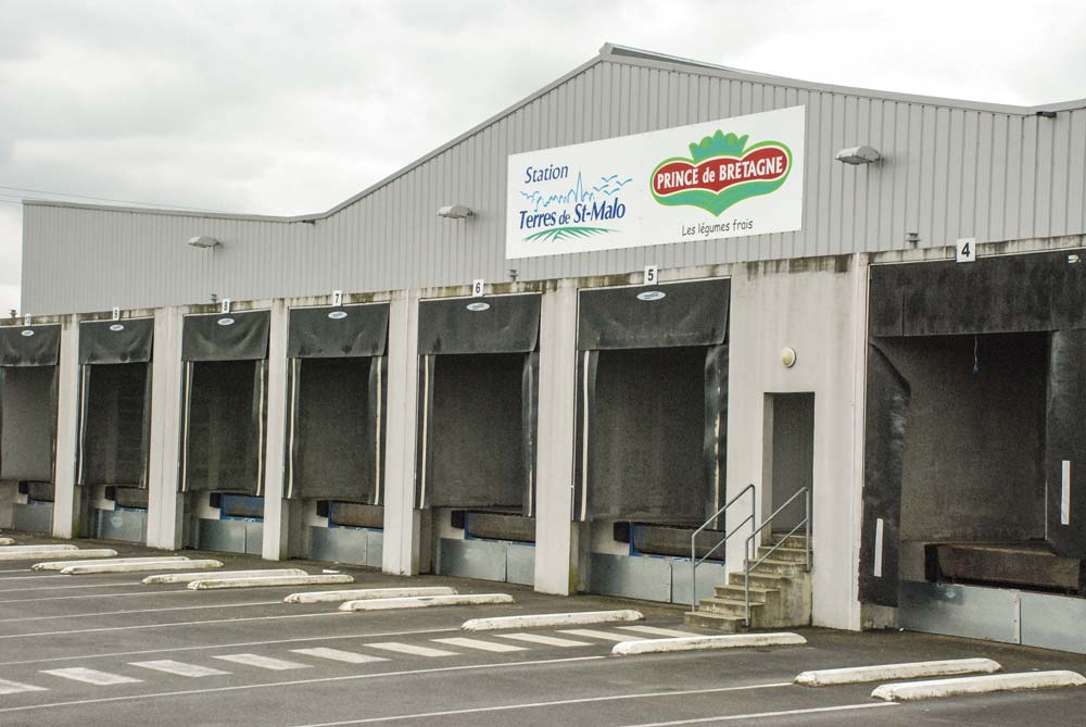 terres-saint-malo-production-legumes