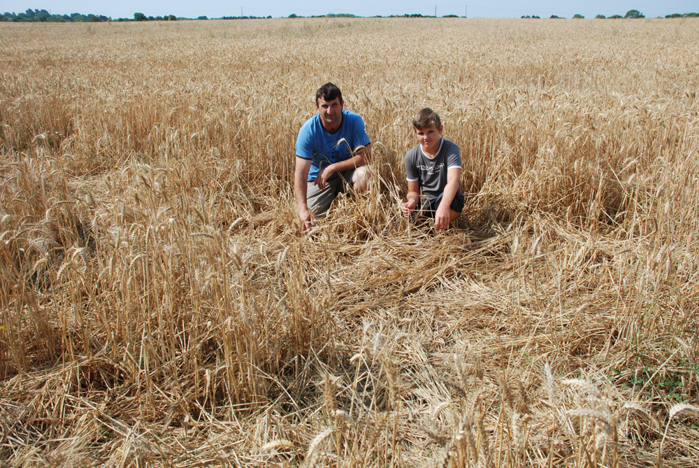 agriculteurs-presqu-ile-rhuys