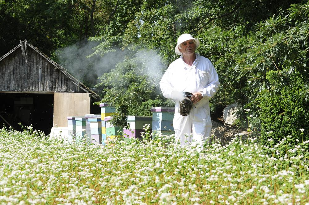 Photo of La Happy culture de l'apiculteur