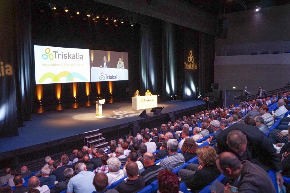 Photo of Triskalia : Une année de consolidation qui prépare l'avenir