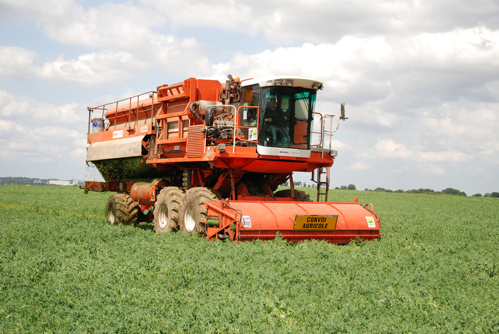 Photo of Légumes : la lutte alternative se développe