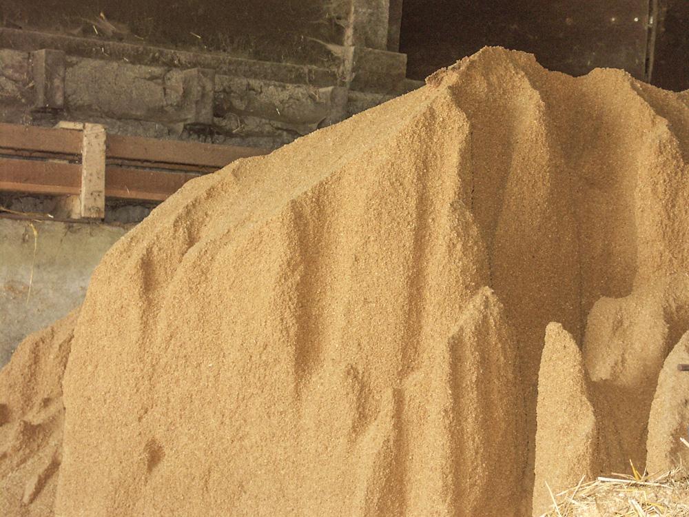 Le tourteau de soja nous joue l 39 arl sienne journal - Cuisiner les germes de soja ...