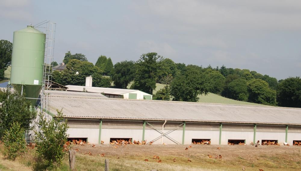 synalaf-reglementation-aviculture