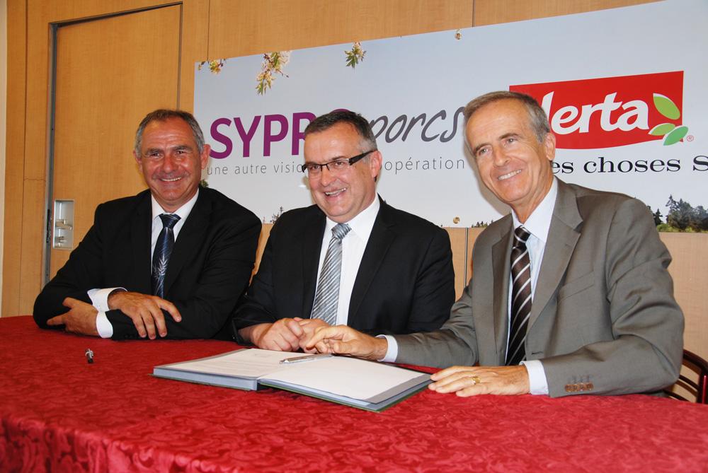 syproporcs-porc
