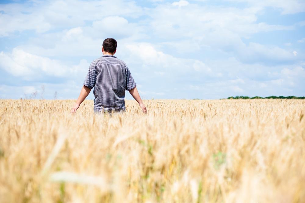 Photo of CMR 29 : Redonnons des perspectives aux agriculteurs, et du sens à leurs métiers