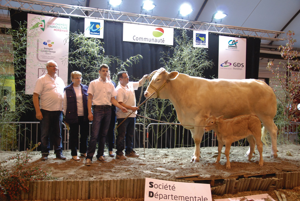 concours-blonde-aquitaine-ohhh-la-vache