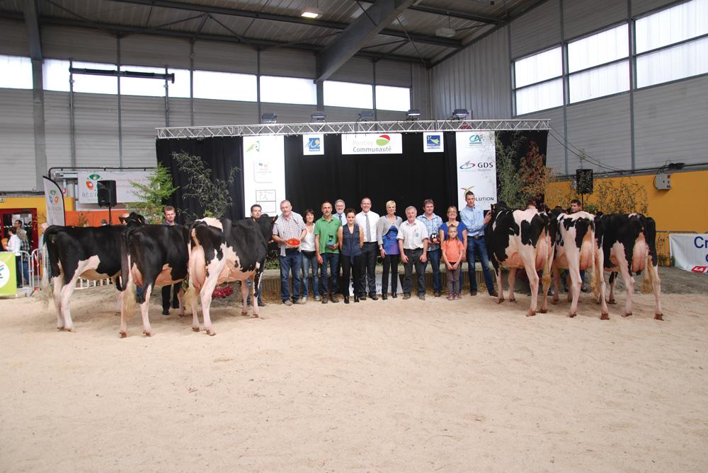 concours-prim-holstein-ohhh-la-vache
