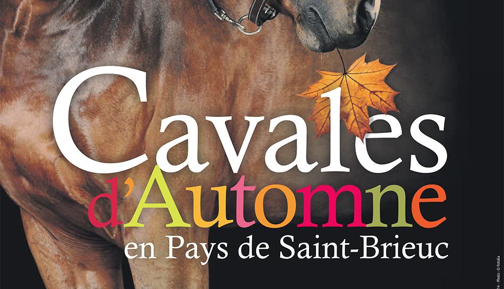 Photo of Les Cavales d'Automne remplissent l'agenda des amoureux du cheval