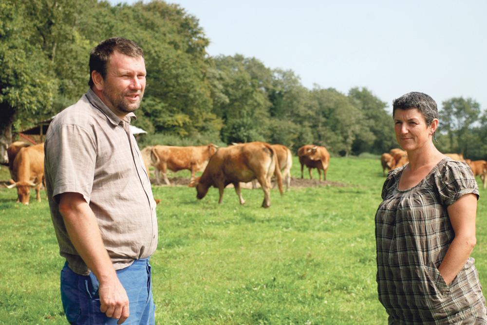 earl-bernard-marchesseau-viande-bovine-syteme-allaitant