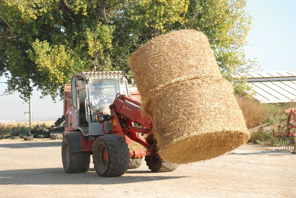 emploi-secteur-agricole
