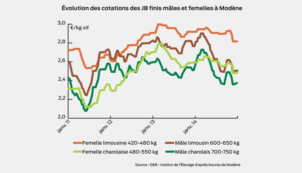 evolution-marche-taurillons