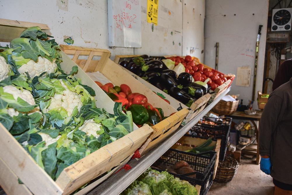 legumes-vente-directe