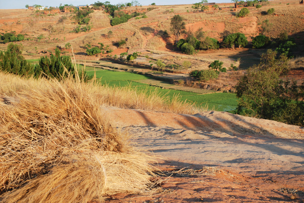 Jean baptiste paysan malgache mise sur la carpe for Elevage des carpes
