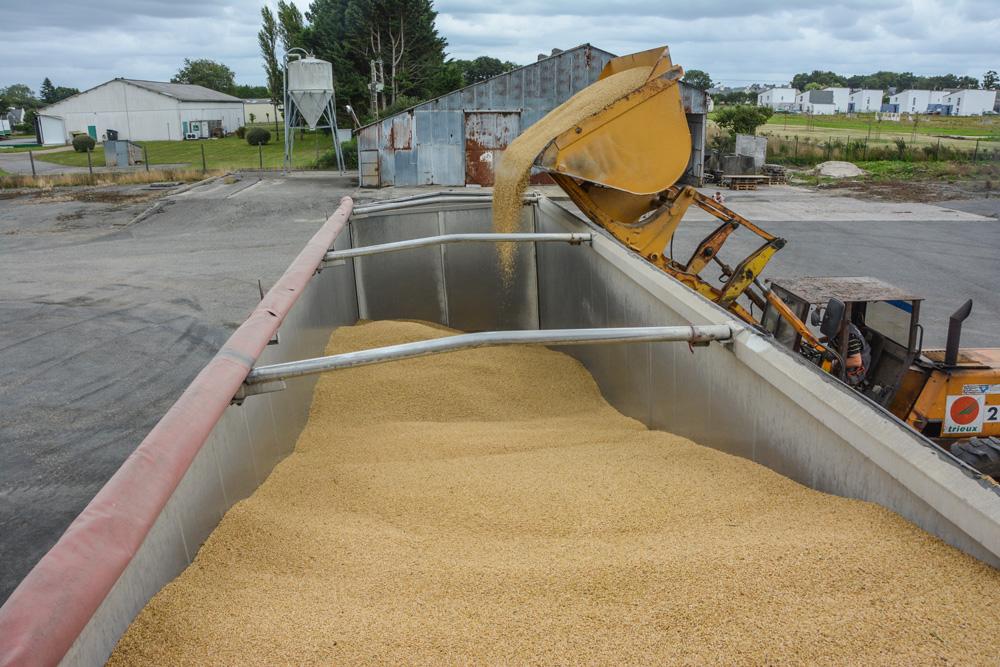 moisson-cereale-2015