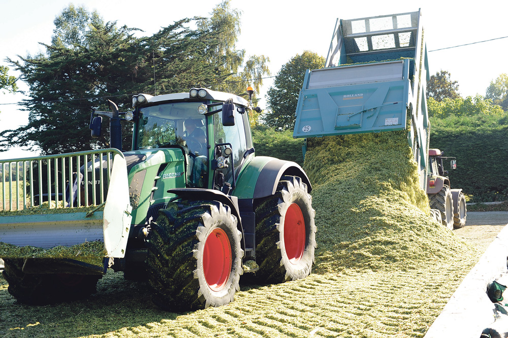 rendement-mais-ensilage-stockage