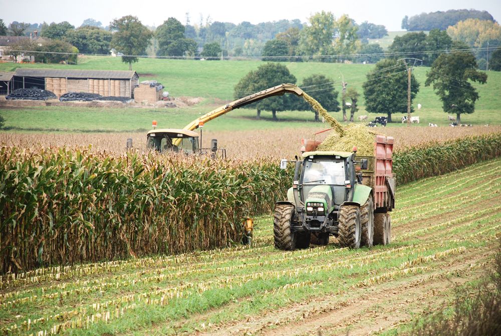 Photo of Les premiers chantiers de récolte de maïs aux portes de la Bretagne
