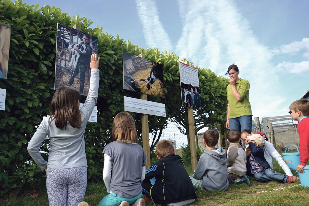 Photo of Ferme pédagogique du Botrai : l'agriculture en 35 photos