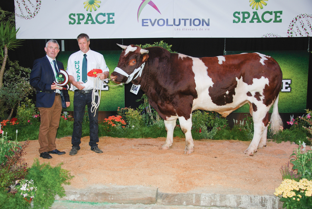 ice-cream-rouge-des-pres-concours-bovin-space-2015-juge