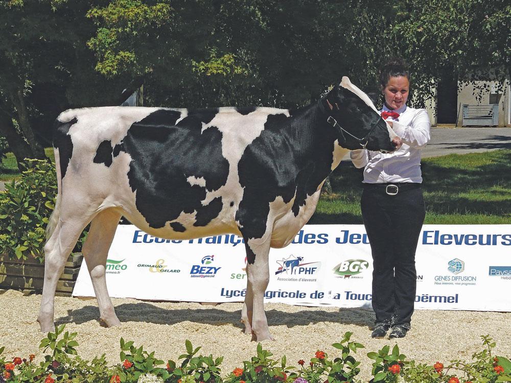 Photo of Concours : bon cru breton à l'école du ring