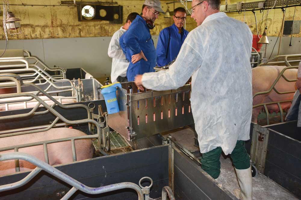 Des Chariots Pour R 233 Duire La P 233 Nibilit 233 En Porc Journal