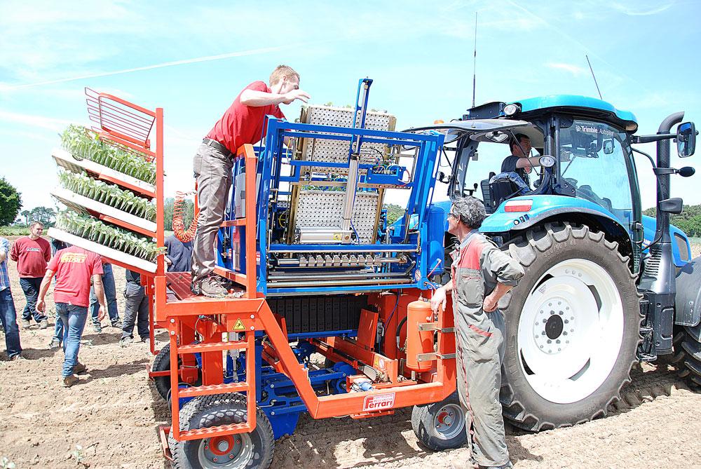 plantation-choux-fleur-cleder-planteuse-automatique-producteur