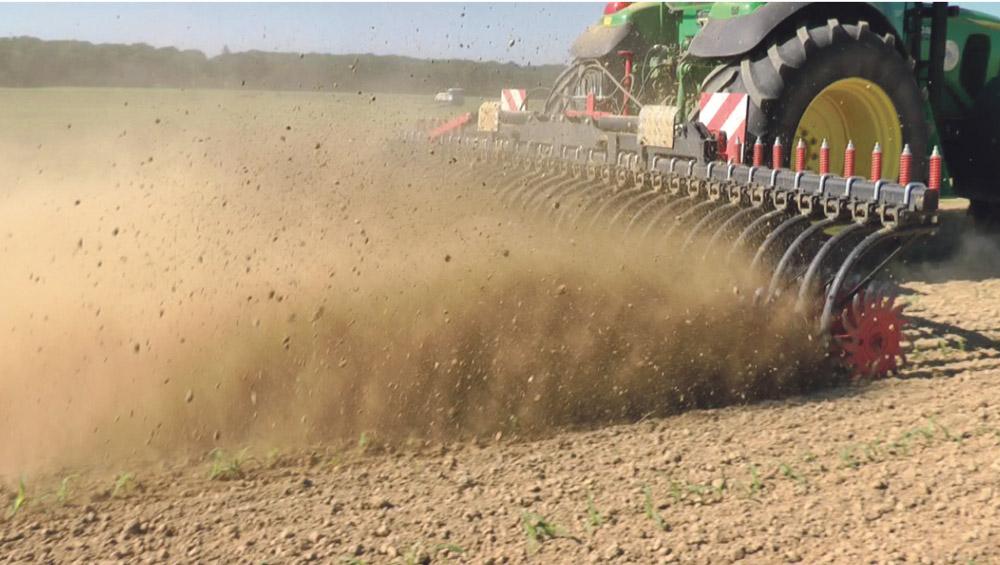 Photo of Optimisation du désherbage mécanique sur maïs