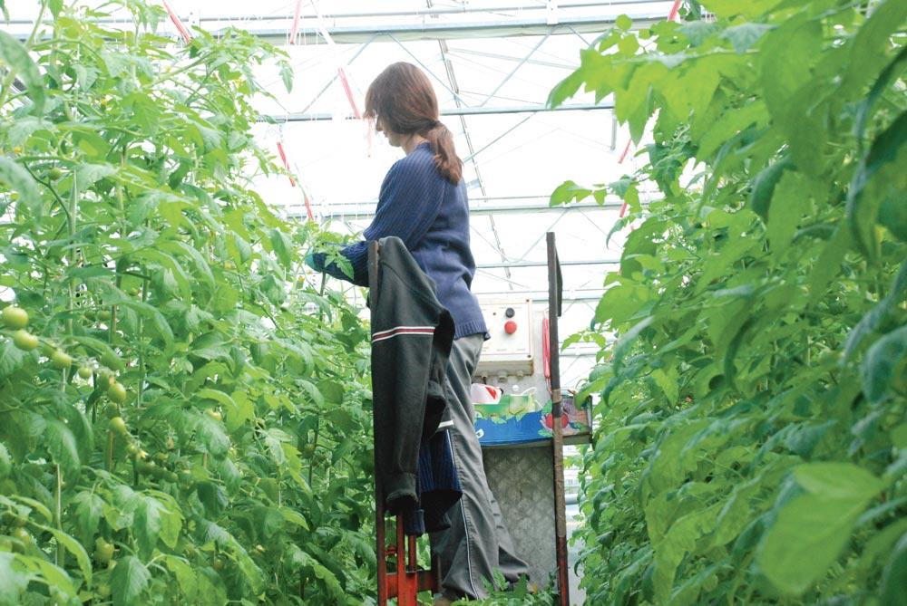 Photo of Accès à l'emploi difficile pour les femmes