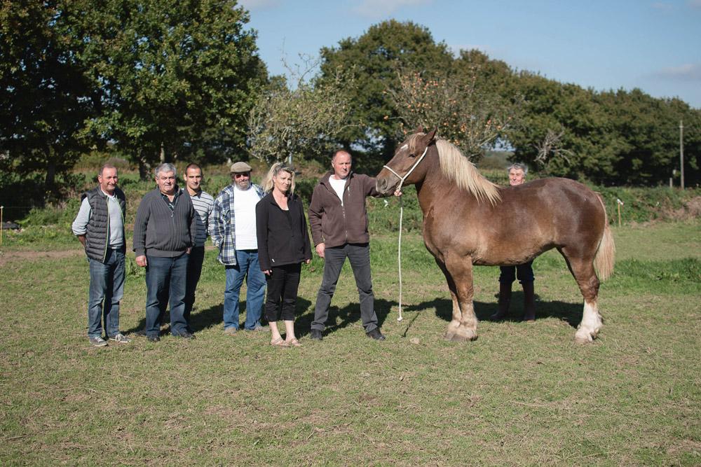 Photo of Un samedi de festivités valorisant le cheval breton