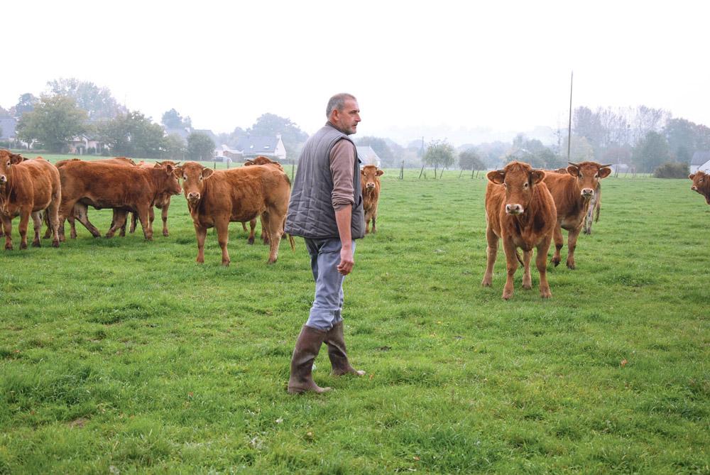 lionel-amouriaux-association-commercialisation-viande-bovine