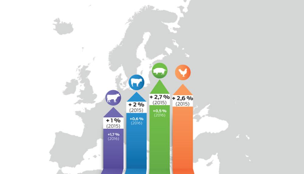 Photo of La chute des prix ne freine pas les productions animales européennes