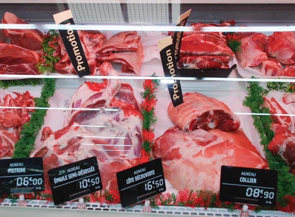 agneau-ovin-prix-consommation-viande