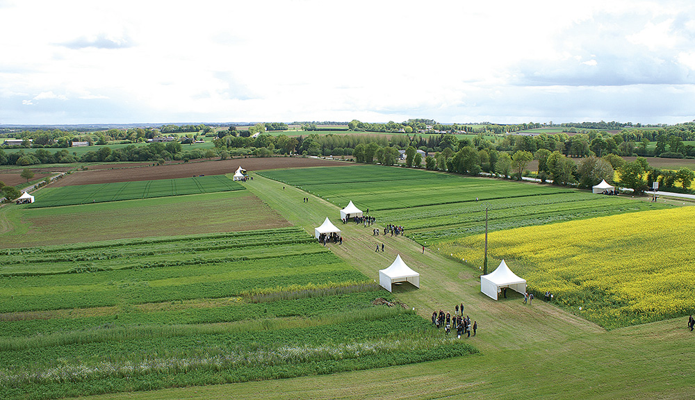 Photo of Assemblées territoriales Triskalia : retour aux champs !