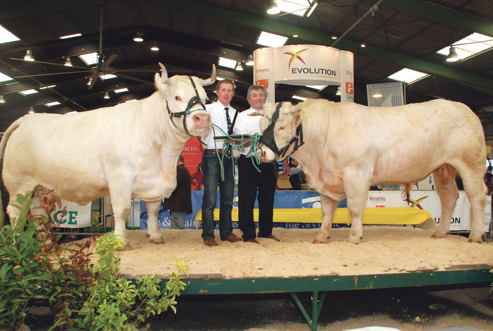 Photo of L'EARL Brard domine le concours Charolais
