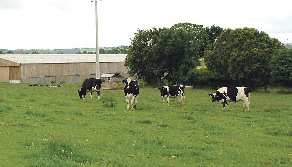 lait-cooperative-agricole-union-europeenne-copa-cogeca