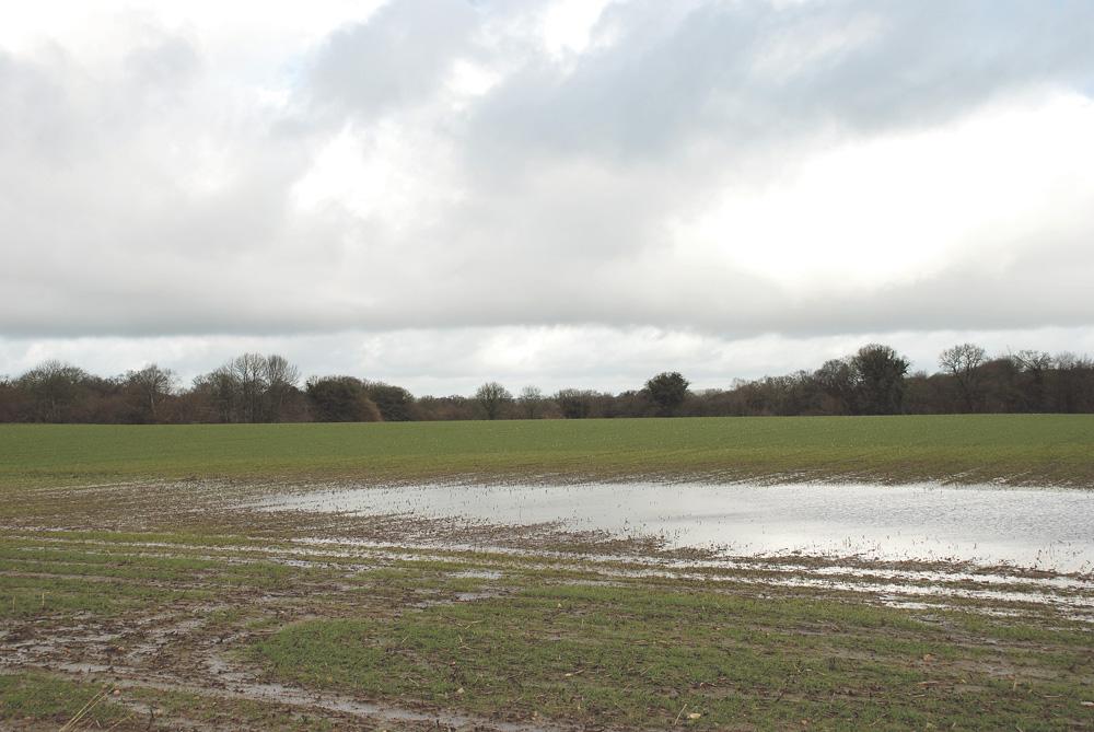 Photo of Un nouveau système d'assurance agricole avant fin juin