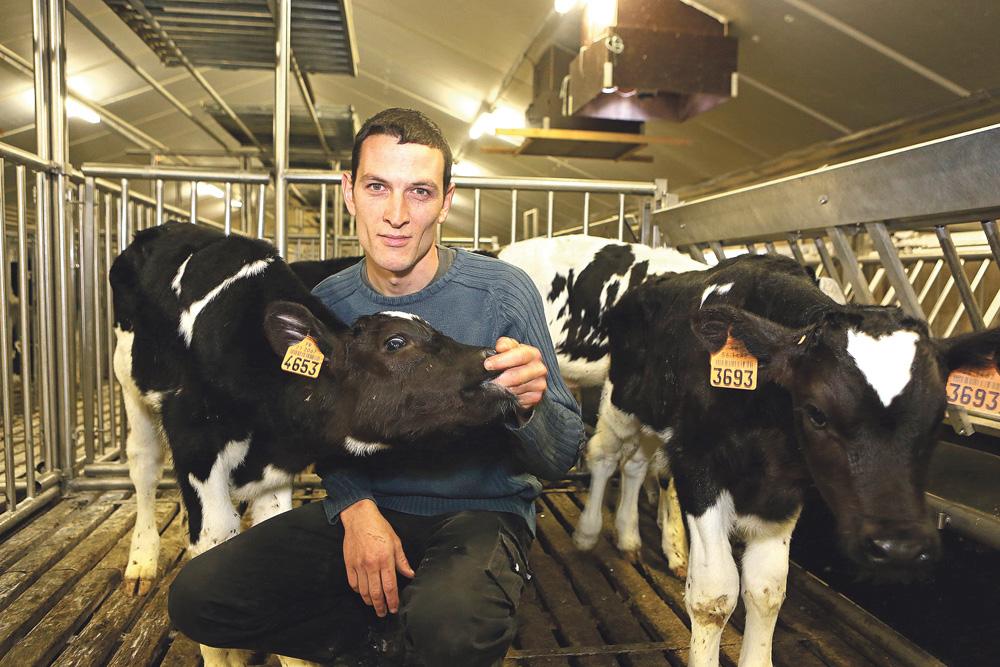 Photo of Avenir bouché pour le veau de boucherie?