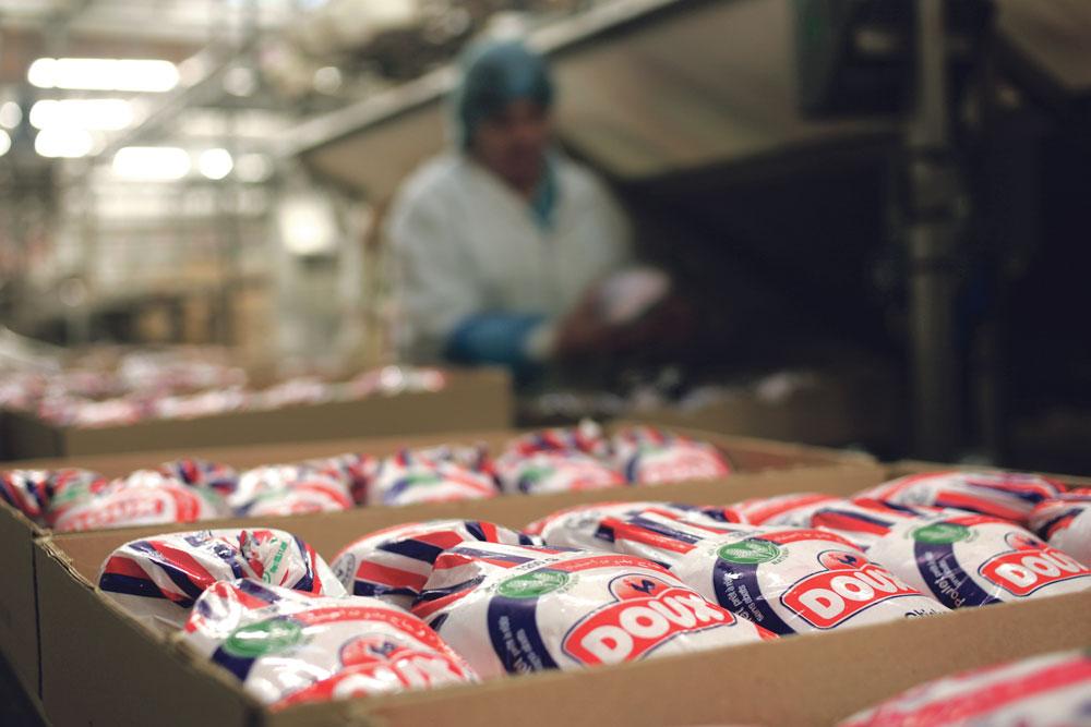 Photo of Les premières aides au poulet export versées