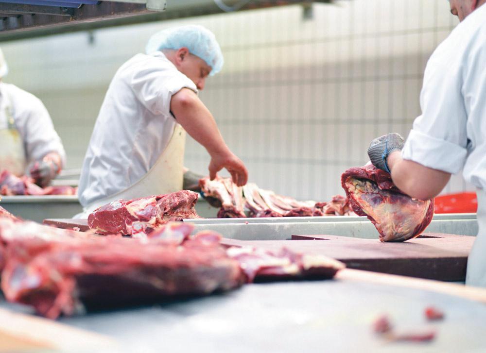 coproduit-viande-porc-poulet-bovin-environnement-dechet-production-biogaz-prix-lait-oeuf-poisson