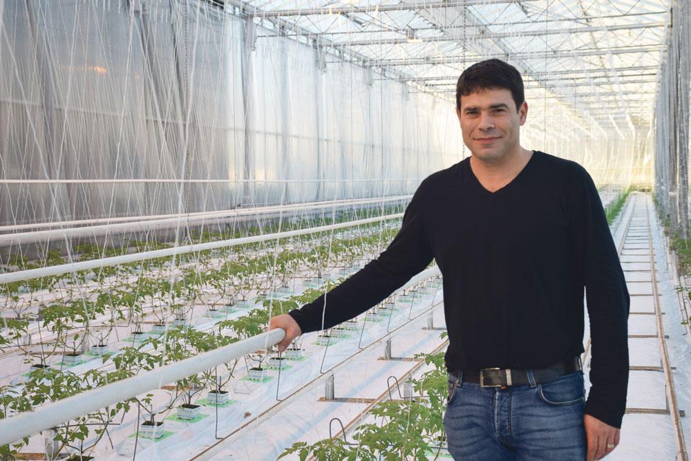 david-potereau-cogeneration-chauffage-electricite-prix-tomate-energie