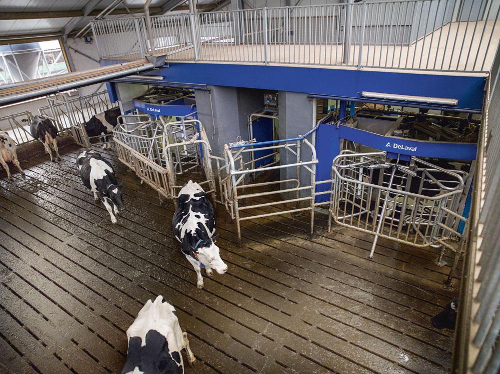 Photo of Un prix du lait plus équilibré avec les nouveaux contrats-cadres ?
